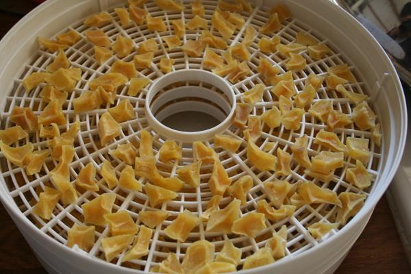patate-essiccate